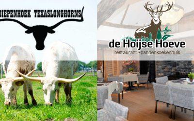 Longhorns & Texas style Roost